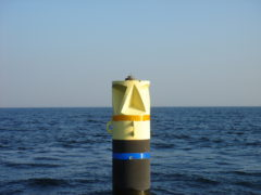 ice_buoy_in_finland_20140807_1826064349